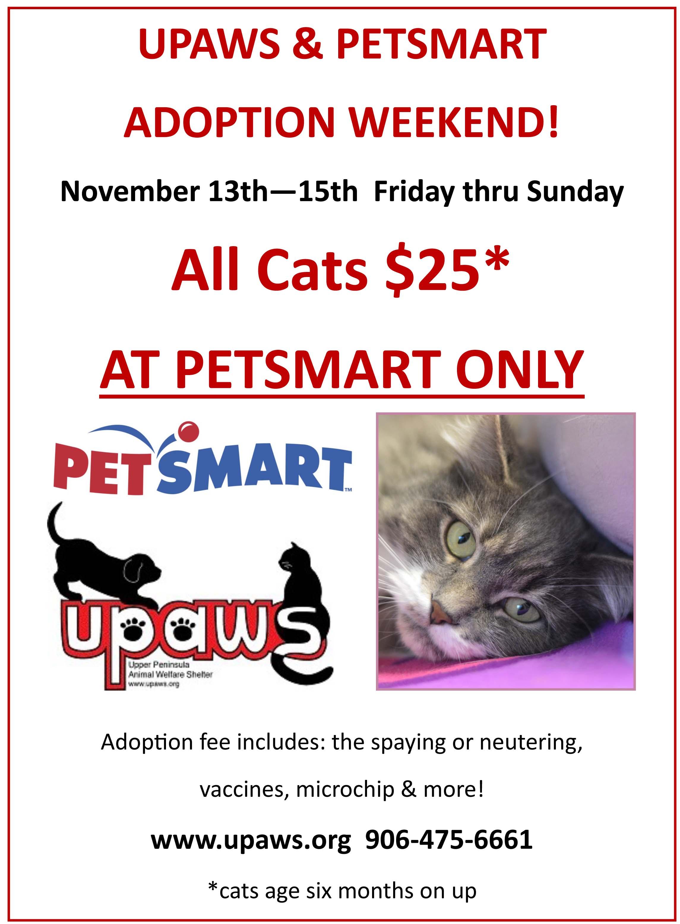 Case Design tuna the dog phone case UPAWS u0026 Petsmart Adoption Weekend - $25 Cats! - Upper Peninsula Animal ...