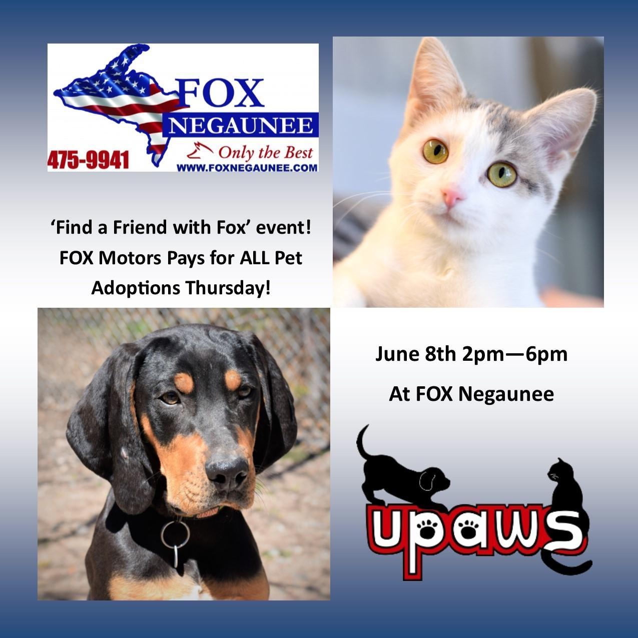 Fox Negaunee Pays For All Pet Adoptions Banner Upper Peninsula Animal Welfare Shelter
